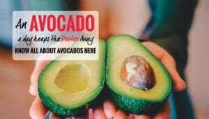 Avocados: TODAYs Apple that will help you keep the Doctor Away!